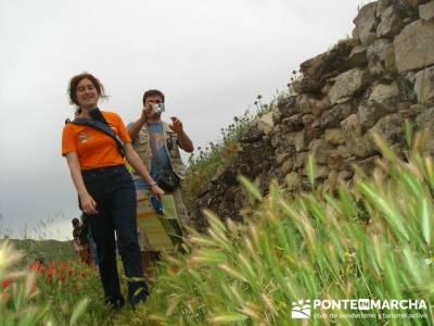 Hoces del Río Duratón - rutas senderismo - Sepúlveda; granja de san ildefonso segovia; rutas a pi